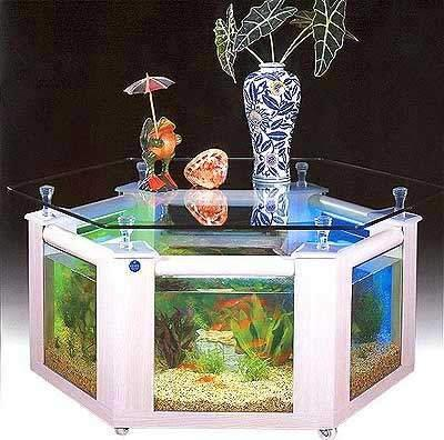 aquarium-which-doubles-as-a-table-for-your-home-or.jpg